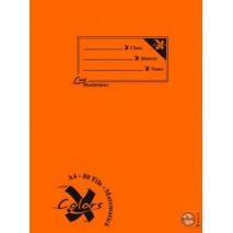 Caiet A4, 80 file, PIGNA Basic