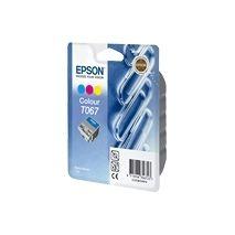 Epson Cartus cerneala C13T06704010 Cartus T06704010