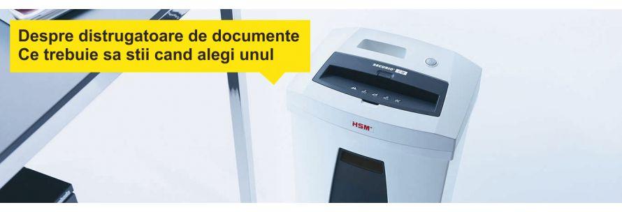 Distrugatoare documente